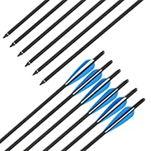 Archery Carbon Arrow Crossbow Bolt Hunting Arrow 20 Inch With Replaceable Field Point 4 Inch Plastic Vanes Pack of 12