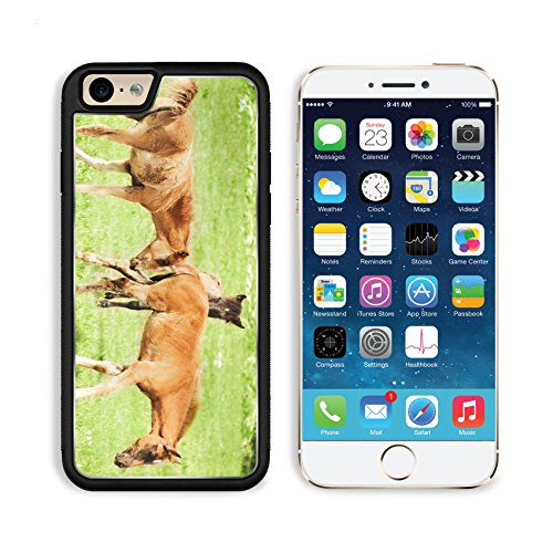 Apple iPhone 6 6S Aluminum Case Foal Horse IMAGE 20607670 by MSD Customized Premium Deluxe Pu Leather generation Accessories HD Wifi Luxury Protector