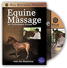 Equine Massage Therapy For Horses