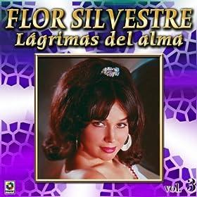 Amazon.com: Lagrimas Del Alma: Flor Silvestre: MP3 Downloads