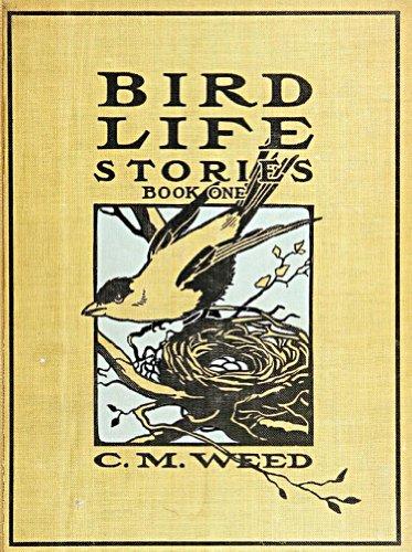 Bird Life Stories