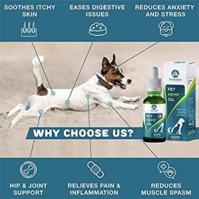 Hemp Oil for Dogs and Cats - 1250 MG - Relief Dog Cat Hemp Oil Calming Treats - Pets Anxiety Tension Hip Seizures Joint Pain Releaf Arthritis Sleep - Omega 3,6,9 Pet Vitamins - Vet Supplement 6in1