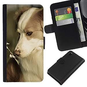 Border Collie Corgi Pet Summer Dog Nature - la tarjeta de Crédito Slots PU Funda de cuero Monedero caso cubierta de piel Sony Xperia Z3 D6603