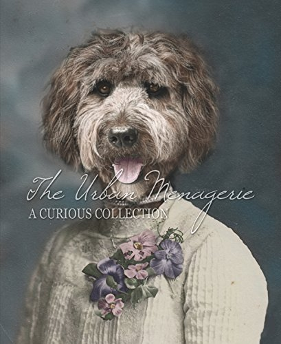 [Anthropomorphic Colorized Portrait, Portuguese Water Dog Art Print, Multiple Sizes Available,] (Inanimate Object Costume)
