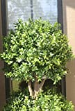 Northwood Calliger 4.6' Artificial Topiary Triple