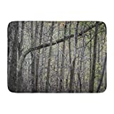 Emvency Bath Mat Bark Brown Abstract Eerie Look Into The Woods Adventure Closeup Bathroom Decor Rug 16'' x 24''