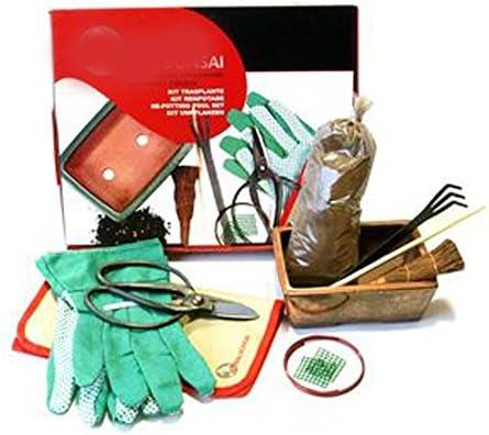 Mistral Bonsái 122508 - Kit trasplante de Bonsái