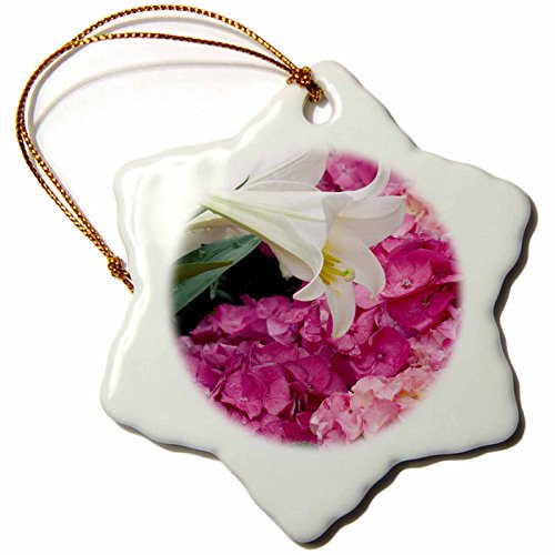 Grow Lily Easter (3dRose orn_83506_1 Rhododendron and Easter Lily, Flowers NA01 RKL0001 Raymond Klass Snowflake Porcelain Ornament, 3-Inch)