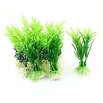 Amazon.com : eDealMax Planta Artificial submarino peces de acuario tanque de decoración 10pcs Verde : Pet Supplies