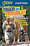 img - for National Geographic Kids Chapters: Tiger in Trouble!: and More True Stories of Amazing Animal Rescues (NGK Chapters) book / textbook / text book