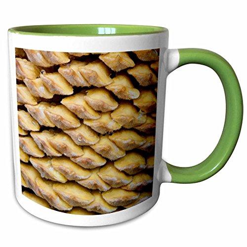 3dRose Danita Delimont - Flora - Sago palm flora, Savannah, Georgia, USA - US11 JWL0574 - Joanne Wells - 15oz Two-Tone Green Mug (mug_143779_12)