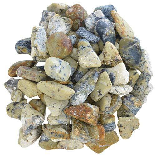 Hypnotic Gems Materials: 1 lb Dendritic Agate Tumbled Stones - Grade 1 - XSmall - 0.5