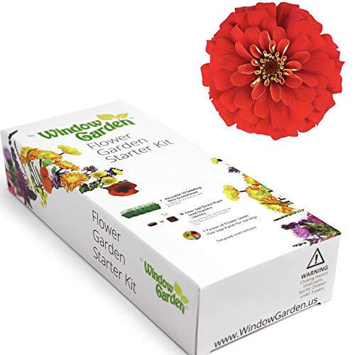 (Garden Starter Kit (Zinnia) Grow a Garden by Seed. Germinate Seeds on Your Windowsill Then Move to a Patio Planter or Flower Patch. Mini Greenhouse System Makes it Foolproof, Easy)