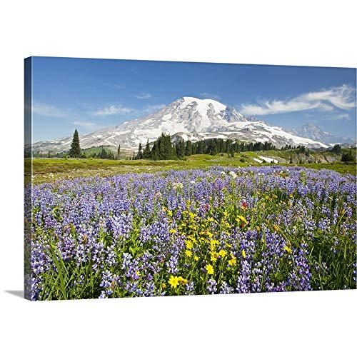 GREATBIGCANVAS Gallery-Wrapped Canvas Entitled Wildflowers in Paradise Park, Mount Rainier National Park, Washington by Craig Tuttle 18