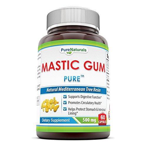 Pure Naturals Mastic Gum