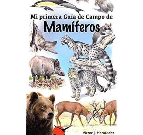 Mi primera guía de campo de mamiferos: Amazon.es: Victor J. Hernandez: Libros