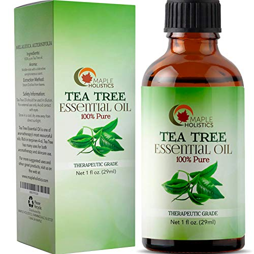 100% Pure Tea Tree Oil Natural Essential Oil with Antifungal Antibacterial Benefits for Face Skin Hair Nails Heal Acne Psoriasis Dandruff Piercings Cuts Bug Bites Multipurpose Surface Cleaner (Best Way To Cure Dandruff)
