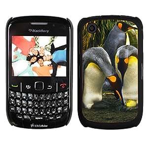 Print Motif Coque de protection Case Cover // V00002698 Pingüinos con Huevo // Blackberry 8520 9300