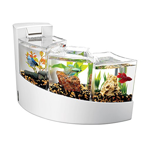 5 gallon fish tank divider - 7