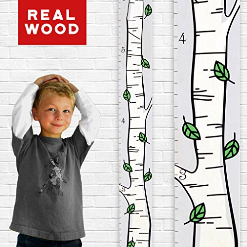 Growth Chart Art | Wooden Birch Tree Growth Chart for Kids [Boys and Girls] - Kids Room Décor Height Chart in 3X Fun Designs - Durable, Portable Birch Tree Décor (Green Leaf Single) by Growth Chart Art