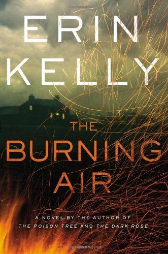 Download The Burning Air: A Novel pdf epub