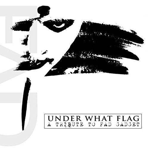 CD : Under What Flag - A Tribute To Fad Gadget / Various (CD)