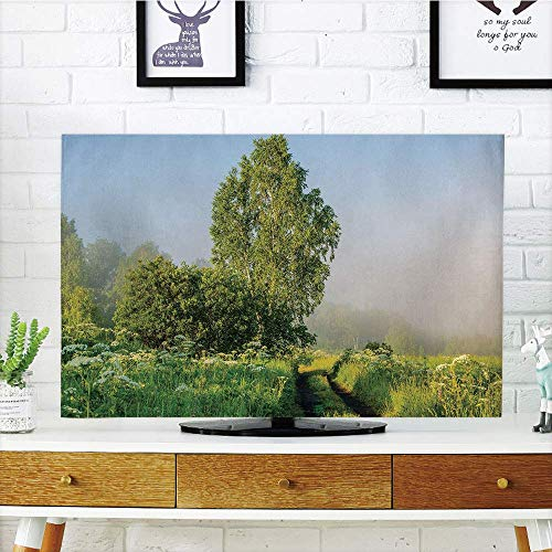- SINOVAL LCD TV Cover Lovely,Nature Decor,Beautiful Serenity Trees Track Path Garden Leaves and Grass Sunny Skies Photography,Green,Compatible 42
