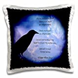 WhiteOaks Photography and Artwork - Halloween - Poe I loved Alone is a design I created representing one of his quotes - 16x16 inch Pillow Case (pc_245652_1)