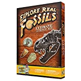 Discover with Dr. Cool Ultimate Fossil Science Kit – 15 Genuine Fossils Including Dinosaur Specimens!