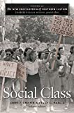 img - for The New Encyclopedia of Southern Culture: Volume 20: Social Class book / textbook / text book