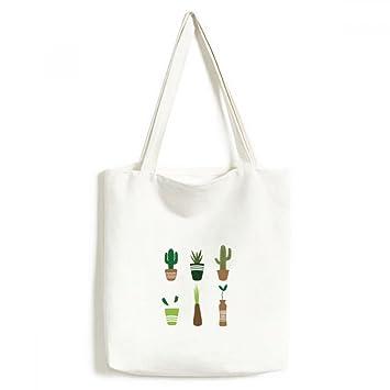 Cactus en maceta plantas suculentas bolsa de lona medio ...