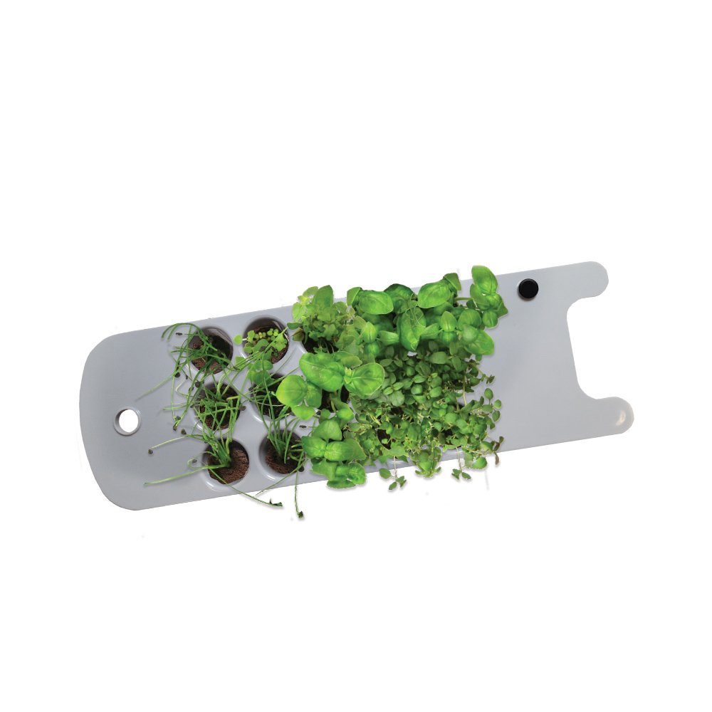 AeroGarden Seed Starting System (Sprout) by AeroGarden
