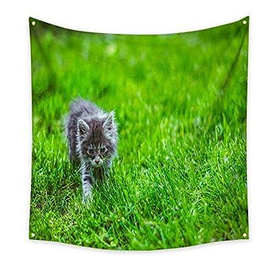 BlountDecor Horizontal Tapestry Pussycat Baby Animals