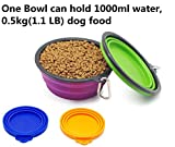 A-Lighting 2 Collapsible Pet/Dog/Cat Food/Water/Feeding Bowls for Traveling with 2 pet food can covers (Big)