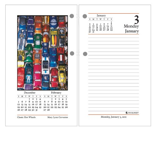 (AT-A-GLANCE Recycled Daily Photographic Desk Calendar Refil, 3-1/2 x 6 Inches, White and Cream, 2011 (E417-50))