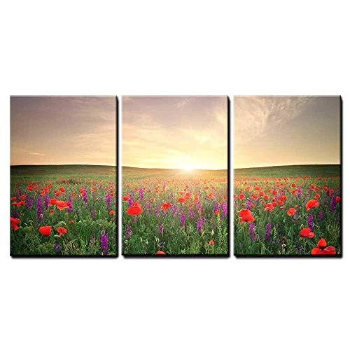 wall26 - 3 Piece Canvas Wall Art - Field with Grass, Violet Flowers and Red Poppies Against The Sunset Sky - Modern Home Decor Stretched and Framed Ready to Hang ()