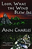 look what the wind blew in a dig site mystery volume 1 paperback february 2 2015