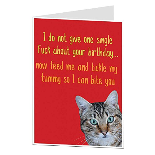 Funny Birthday Card Cat Pet Theme Rude Offensive Perfect For Owner Lover Men & Women ()
