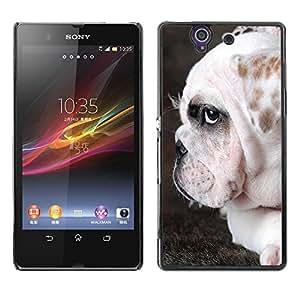 SHIMIN CAO- Dise?o Caso duro de la cubierta Shell protector FOR Sony Xperia Z L36H L36I C6603 Xperia Z- Bulldog Bull Dog Pet Puppy