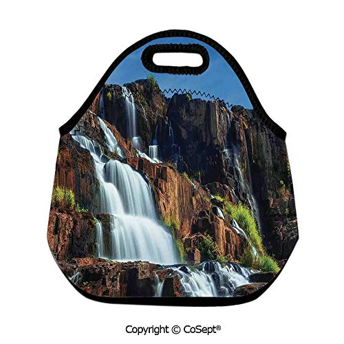 Natural Beauty Ladies Handbag - Neoprene Lunch Tote Bag Washable Lunchbox Bag,Pongour Waterfall Exotic Asian Natural Beauty Landscape Mountain Rocks Print,for Boys Girls Women Kids-owls(11.81x6.29x11.02 inch) White Blue