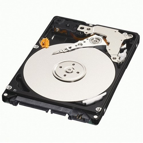 - Western Digital 320GB Scorpio Blue SATAII 5400RPM 2.5IN 8MB Bulk/OEM Hard Drive WD3200BEVT