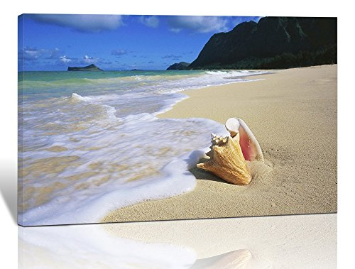 - Purple Verbena Art Romantic Waves Washing Seashell in a Sandy Blue Sea Beach Modern Wall Decor, HD Home Walls Decoration Stretched Gallery Canvas Wrap Giclee Prints. Ready to Hang, 10''x14''