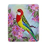 My Little Nest Warm Throw Blanket Colorful Parrot Branch Lightweight Microfiber Soft Blanket Everyday Use for Bed Couch Sofa 50'' x 60''