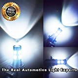 9145 red led fog light bulbs - Led Fog Lights Bulbs White H10 9145 - Extremely Super Bright Fog Light Lamps Projector Replacement Kits for Trucks, Cars Plug and Play with 2200 Lumens Cree 50 Watt (Pack of 2), 2 Years Warranty