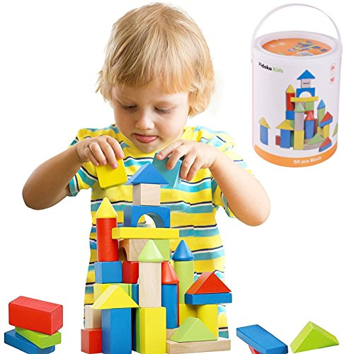Deluxe 50 Piece Hand-Crafted Wooden Building Blocks Set with Carrying Container - Hardwood Plain & Colored Wood Playing Toy Blocks for Boys & Girls - Durable Stacking Blocks for Toddlers Preschool age -