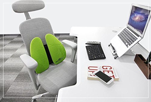 Emperor of Gadgets Patented Posture Back Support for Desk Chairs - Ergonomic Low Pressure Lumbar Back Support for All Types of Office Chairs by Emperor of Gadgets (Image #2)