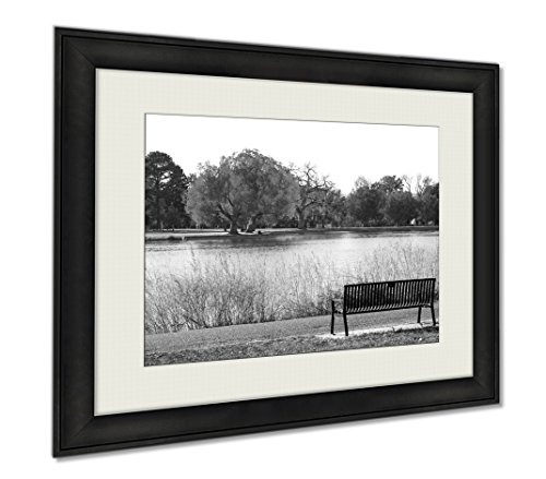 Ashley Framed Prints Green Tree In Black And White Landscape Scene With An Empty Park, Wall Art Home Decoration, Black/White, 30x35 (frame size), AG6384220 by Ashley Framed Prints