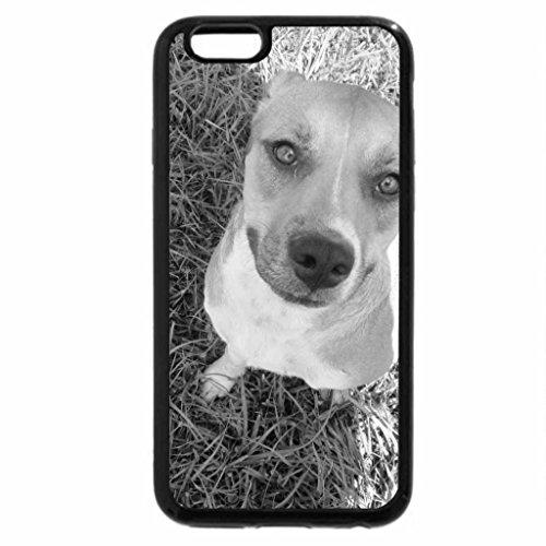 iPhone 6S Plus Case, iPhone 6 Plus Case (Black & White) - Cute Shy Dog !