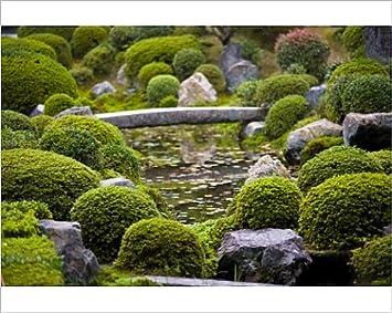 Amazon De Fotodruck Hojo Hasso Zen Garten Tofuku Ji Kyoto