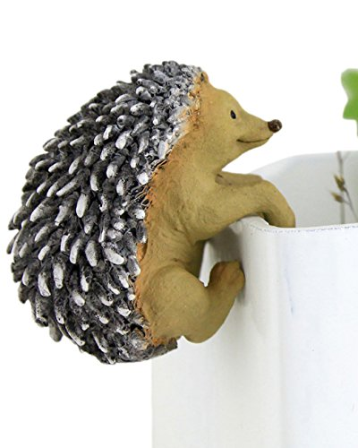Top Collection Miniature Terrarium Hedgehog